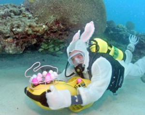 Easter Egg Hunt Dive