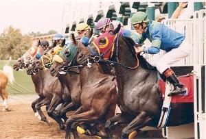 del-mar-horse-racing