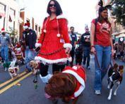 Gaslamp-holiday-pet-parade