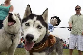 8th Annual Doggie Street Festival San Diego