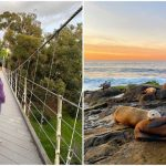 Top 7 Fun and Interesting Things to Do in San Diego